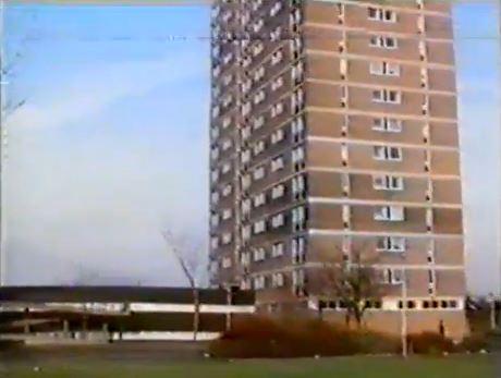Bird Blocks 1985